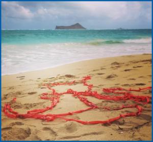 Ribbons Project - Honolulu